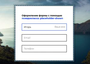 form-placeholder