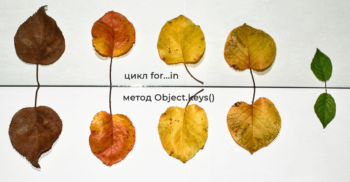 Цикл for...in или метод Object.keys() для копирования объектов в JS